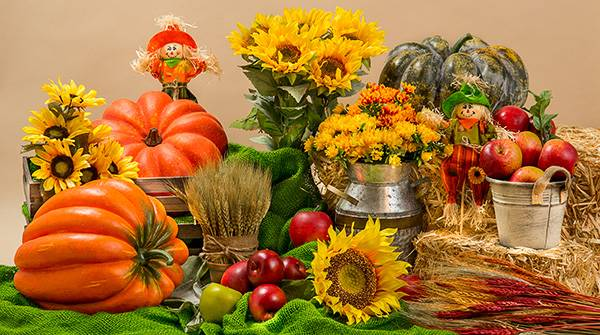 Fall Autumn Decorations