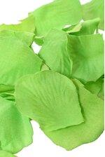 SILK ROSE PETALS APPLE GREEN PKG/500
