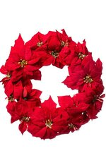 "18"" POINSETTIA WREATH RED"