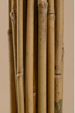"4FT X .50"" BAMBOO STAKE NATURAL PKG/25"