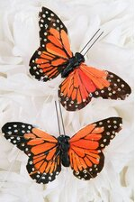"3"" BUTTERFLY MONARCH PKG/12"
