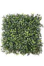 "12"" TRIMMED BOXWOOD SQUARE GREEN"
