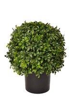 "16"" Boxwood Ball w/ Topiary Pot Green"