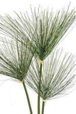 """28"""" PAPYRUS GRASS PKG3 GREEN"""