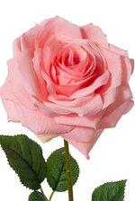 "20"" OPEN ROSE SPRAY PINK"