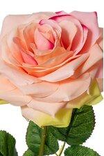 "20"" OPEN ROSE PINK/GREEN"
