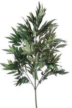 4FT MANGO TREE GREEN
