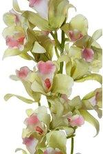 "36"" ORCHID CATTLEYA PLANT LIGHT GREEN"