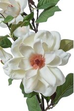 36'' SILK MAGNOLIA SPRAY CREAM