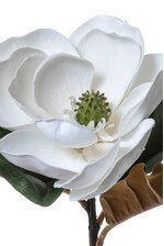 "30"" ARTIFICIAL MAGNOLIA STEM WHITE"