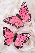 """3"""" PRINTED BUTTERFLY PINK PKG/12"""