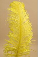 """18""""- 22"""" SINGLE OSTRICH FEATHER YELLOW"""