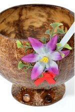 10OZ COCONUT CUP W/STRAW NATURAL