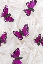 "1"" BUTTERFLY PURPLE PKG/12"