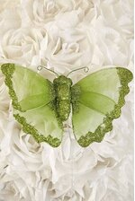 """6"""" SHEER BUTTERFLY LIME GREEN"""
