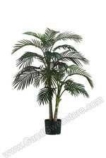 4FT GOLDEN CANE PALM TREE IN PLASTIC POT GREEN