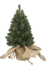 """13"""" X 7"""" CANADIAN PINE TREE WRAPPED IN BURLAP GREEN"""