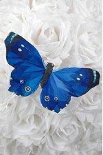"""5"""" BUTTERFLY ROYAL BLUE PKG/12"""