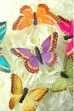 """4"""" FEATHER BUTTERFLY ASSORTED PKG/12"""
