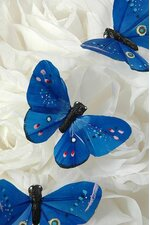 """3"""" BUTTERFLY ROYAL BLUE PKG/12"""