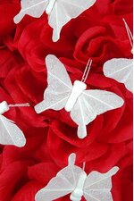 "2"" NYLON BUTTERFLY WHITE PKG/12"