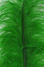 """22""""-26"""" OSTRICH PLUM KELLY GREEN PKG/6"""