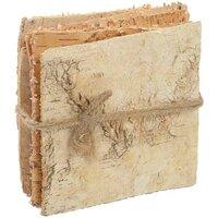 Birch Items