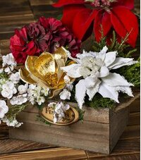 Poinsettias & Other Holiday Flowers