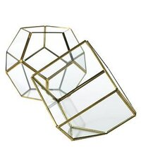 Hira Glass & Terrarium Display Boxes