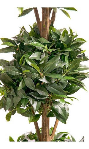 5FT SWEET BAY-LEAF TOPIARY TRIPLE BALL TREE GREEN