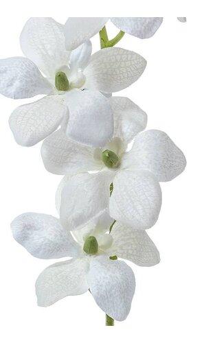 """21"""" VANDA ORCHID SPRAY WHITE"""