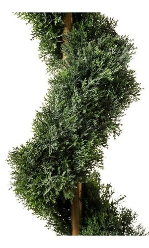 6' CEDAR SPIRAL X1808L GREEN EA