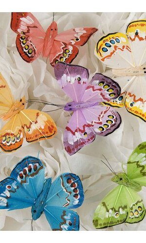 """2.5"""" FEATHER BUTTERFLY ASSORTED PKG/12"""