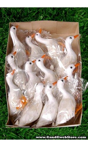 FEATHER COTTON GOOSE WHITE PKG/12