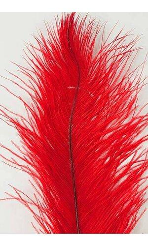 "14""-16"" OSTRICH FEATHER RED PKG/12"