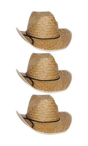 ADULT COWBOY HAT PKG/6