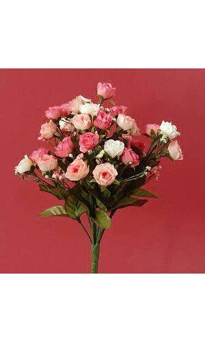 "12"" SWEETHEART ROSE BUSH x14 PINK/CREAM EA"